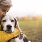 How to Strengthen Your Senior Dog's Brain Power