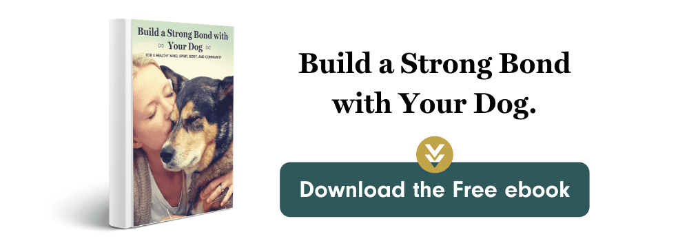build a strong bond with your dog ebook