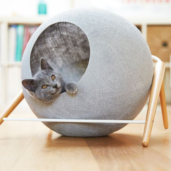 Cat furniture - cat cocoon
