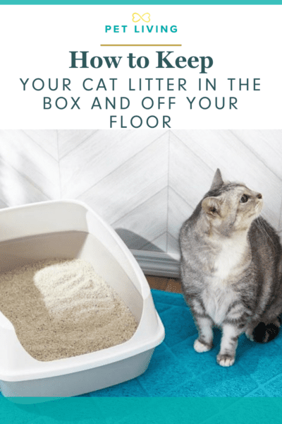 Cat litter can be messy! Here is how to help.