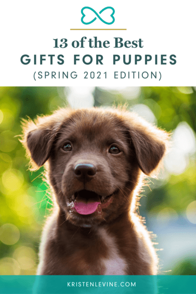 Check out these 13 best gifts for puppies this spring 2021!