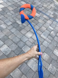 Chuckit! Ring Chaser for the ultimate fetch
