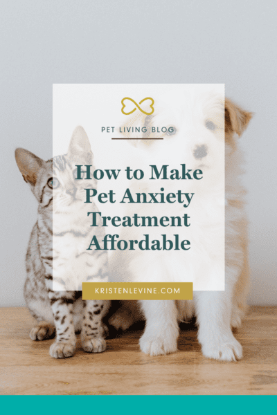 Pet anxiety treatment doesn't need to be expensive! Make it more affordable with these tips.