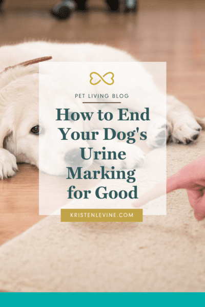 End your dog's Urine Marking for Good!