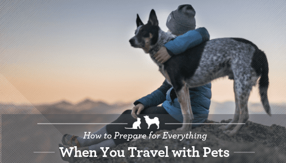 Be prepared for stress free travel with your pets.