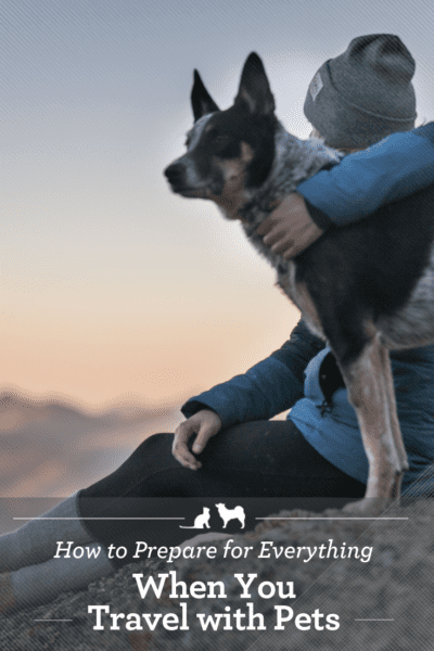 Make these preparations for low stress travel with your pets.
