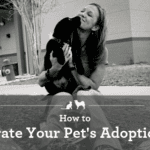 How to Celebrate your Pet's Adoption Day