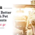 How to Better Reach Pet Parents on the Go