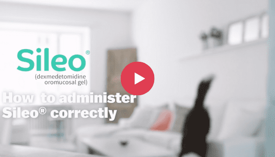 Learn how to administer SILEO