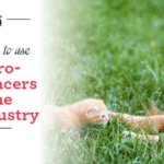 5 Big Reasons to Use Micro-Influencers in the Pet Industry