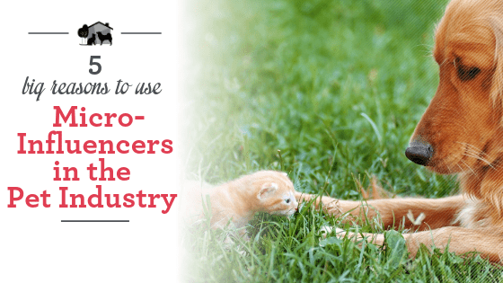 5 big reasons to work with micro-influencers in the pet industry.