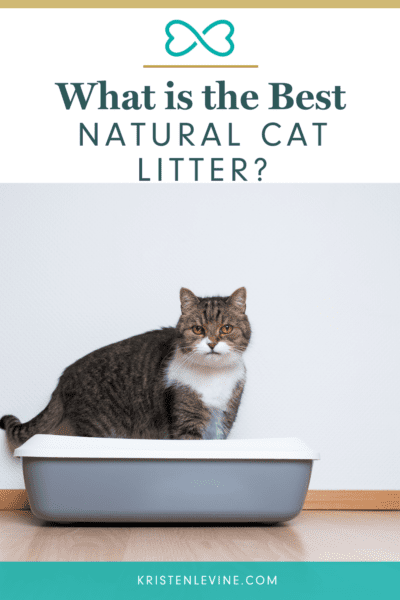 Looking for a healthier litter? Look no further!