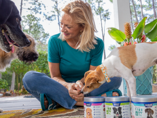 Choosing the right nutrition for your best friend can be tricky, heres what I have found.