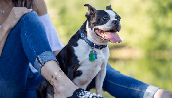 Dog moms everywhere will LOVE these tattoos!