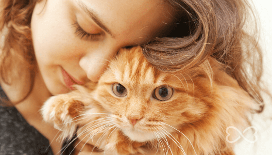 Show your cat you love them in their language.