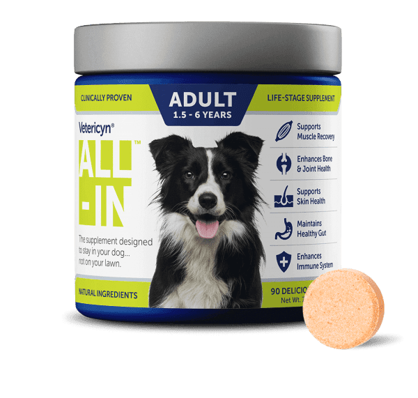 This Dog Supplement helps your adult dog's body work its best