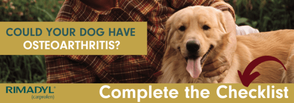 Complete the checklist to see if your dog has osteoarthritis.