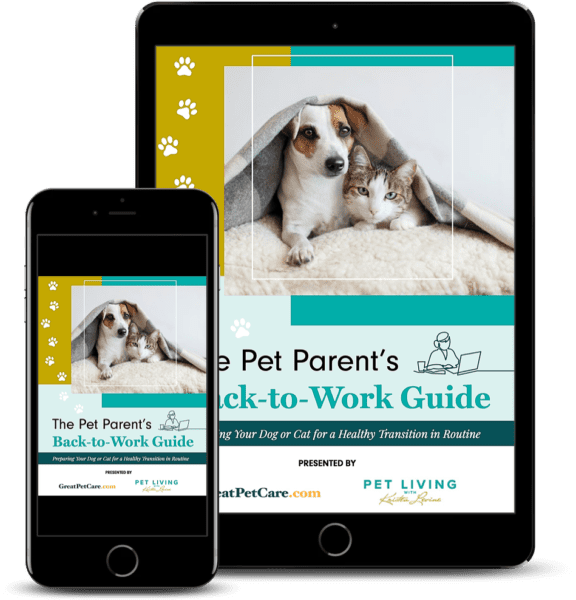 Pet Parent's Back to Work Guide
