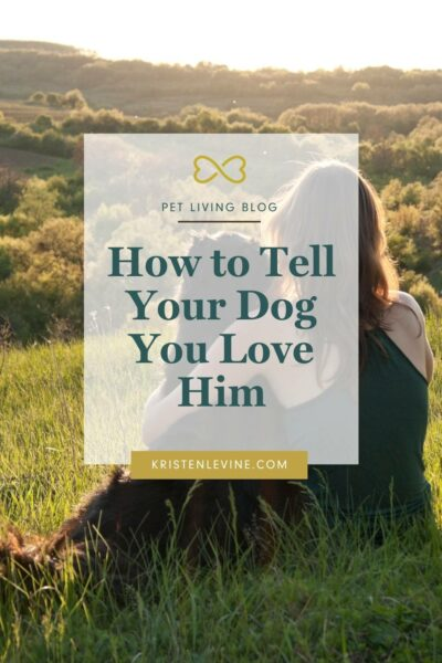 Does your dog know how much you love him? Here's how to tell him in ways he can understand.