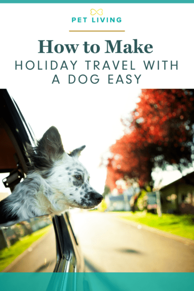 Pin Me - How to Make Holiday Travel with A Dog Easy