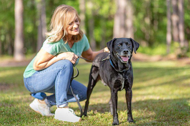 walking dog in park pet advice
