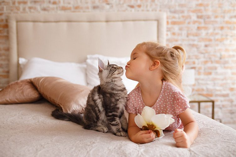 cat on bed with child pet advice