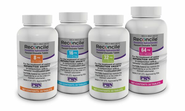 A medication like Reconcile can help relieve separation anxiety.